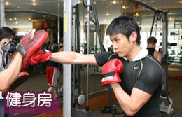 2008明星带你走遍新北京