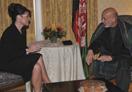 佩林会见阿富汗总统卡尔扎伊