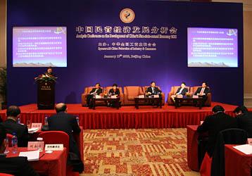 2008年度中国民营经济发展形势分析会,搜狐财经
