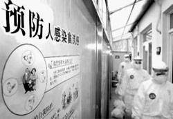 人禽流感防治指南
