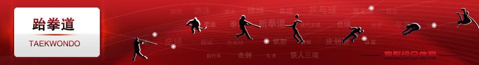 跆拳道,陈中,吴静钰,罗微,刘哮波