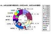 2009中国年度新车报告