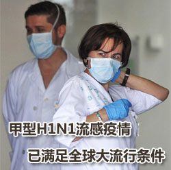 专家:甲型H1N1流感疫情已满足全球大流行条件