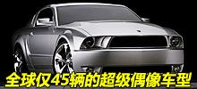 2010款福特野马Iacocca Edition