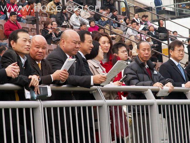 香港赛马会将增赛事 会否助图片
