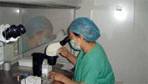 生殖医学科医师在进行胚胎培养操作