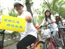 城市自行车辅助交通方案