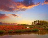 如画风景 汉石桥湿地光影记