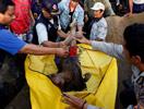 印尼地震中遇难的小孩