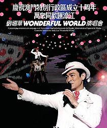 刘德华 Wonderful World 演唱会