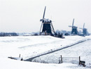 荷兰风车上积满雪花