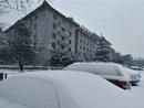 北京第二场春雪如约而至