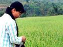 农业用水改革:公共产品市场化困惑