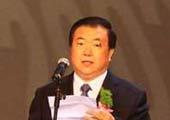 安徽省委副书记、省长王三运