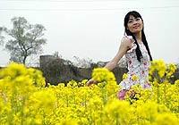 广东英德:看菜花住树屋