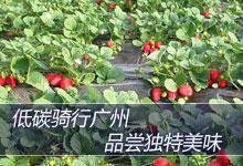 绿色生活攻略 广州绿色出行