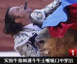 视频实拍公牛发狂 牛角刺透斗牛士喉咙口中穿出