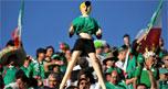2010世界杯,南非世界杯