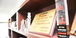 专访上海新高姿化妆品有限公司总经理陈丹霞