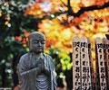 日本女性时兴寺庙休假