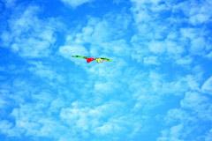 追随春天的步伐放风筝
