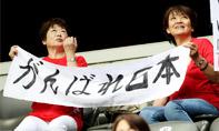 日本球迷感谢世界