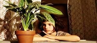 《这个杀手不太冷》,法国电影,吕克贝松,法国留学,娜塔莉波曼