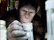 凯撒是智力高度发达的猿类领袖