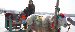 欢欢喜喜大过年 延庆春节休闲游实用攻略