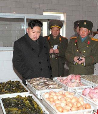 饥饿的朝鲜