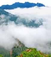 雾灵山飘渺云海