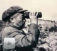 彭德怀在朝鲜战场
