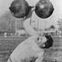 1904年第二届圣路易斯奥运会英雄人物