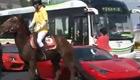 美女骑战马爆踹豪华跑车