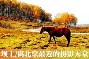 离北京最近的摄影天堂 木兰围场坝上