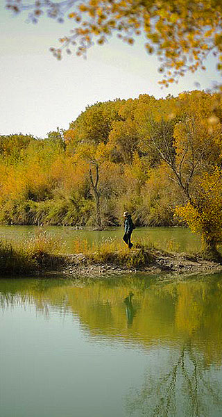 不到喀什不算到新疆 北方赏秋最美地儿