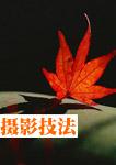 秋季红叶摄影实用5技法