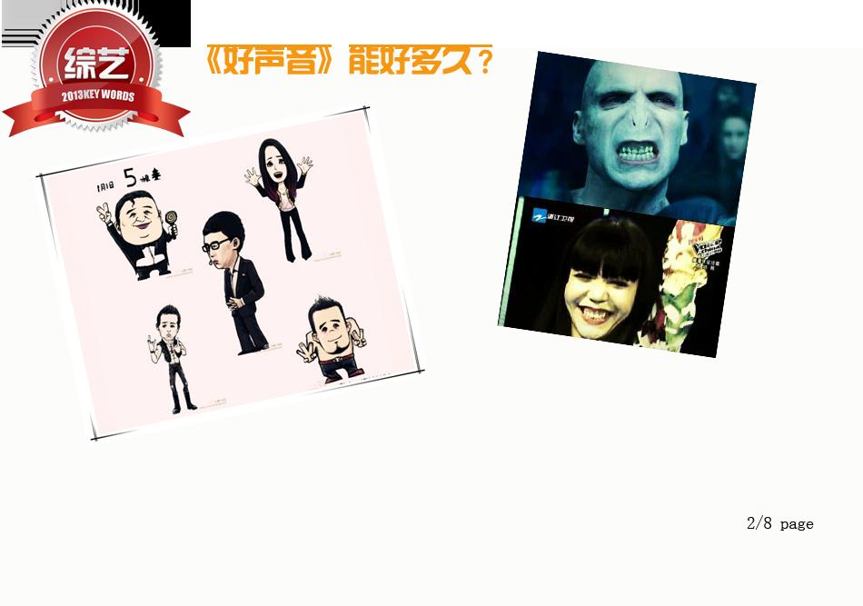 综艺2013