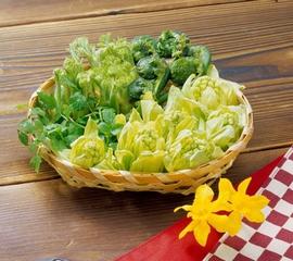 春季寻鲜 把野菜摘回家