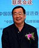 贾新光 搜狐汽车首席评论员、汽车行业资深专家