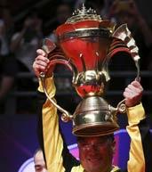 2013苏迪曼杯