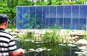 中山公园建基地 2万只萤火虫飞来青岛安家