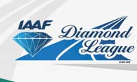 2013国际田联钻石联赛