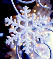 冬日圣诞最好装饰