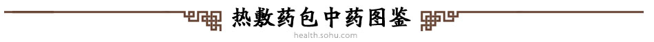 中医养生班——学三九灸