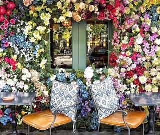 �����ȶ�������Ļ��������The Ivy Chelsea Garden