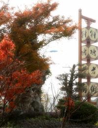 【江南美】苏州城里的斜塘老街