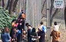 游客无视电网近距离观虎