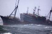 渔船东海沉没13人失踪