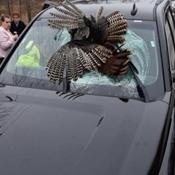 """家庭行车遇意外 火鸡""""从天而降""""砸穿挡风玻璃"""
